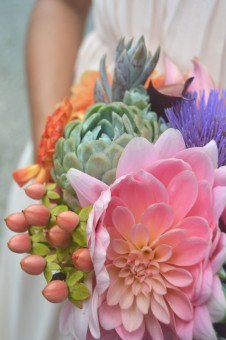 Echeverias with dahlias & cardoon flowers