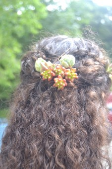 Succulent hair decorations